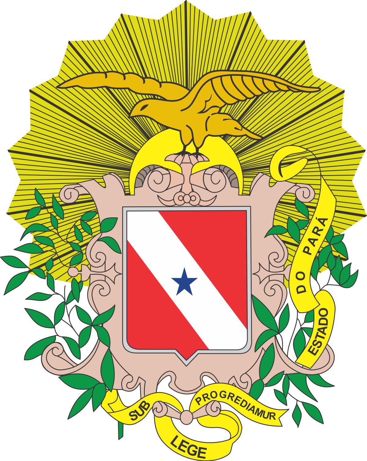 LEILÃO DA JUSTIÇA ESTADUAL DE CHAVES/PA – VARA ÚNICA